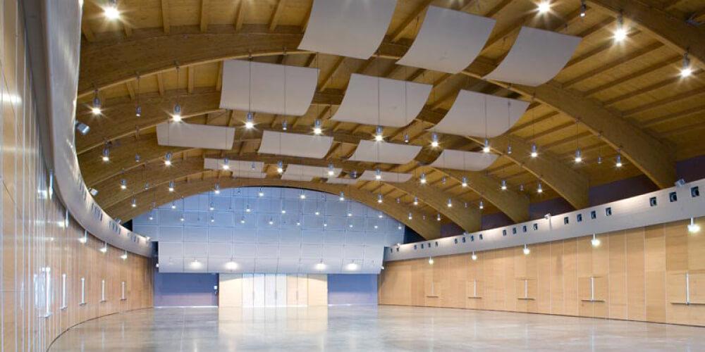 Acoustic Panels Panneaux acoustiques Fantoni_AuditoriumVallelunga16